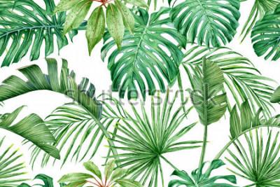 Fotomural Folhas tropicais. Monstera, strelitzia, palmas. Aquarela sem costura padrão.