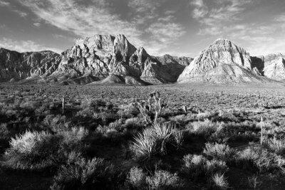 Fotomural Formações rochosas geológicas Red Rock Canyon Las Vegas EUA