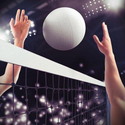 Fotomural Fósforo do voleibol
