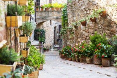 Fotomural Fotografia com efeito de Orton de uma rua decorada com plantas e flores na cidade italiana histórica de Spello (Úmbria, Italy)