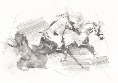 Fotomural freehand horse head pencil drawing