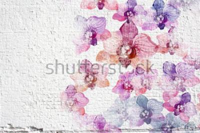 Fotomural Fundo branco do estuque da parede do grunge. A textura do estuque da parede com aquarela colorida floresce orquídeas.