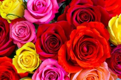 Fotomural Fundo das rosas