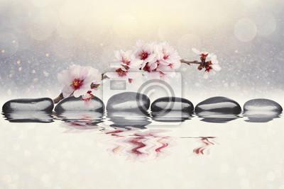 Fotomural Fundo de flores de amêndoas