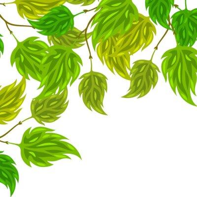 Fotomural Fundo de folhas estilizados verde para cartões
