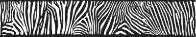Fotomural Fundo do vetor com pele de zebra