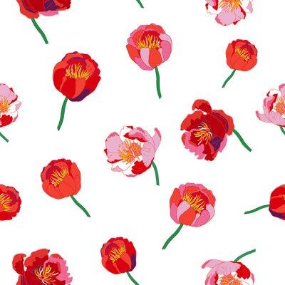 Fotomural Fundo floral sem emenda. Flores vermelhas isoladas no fundo branco. Ilustração do vetor.