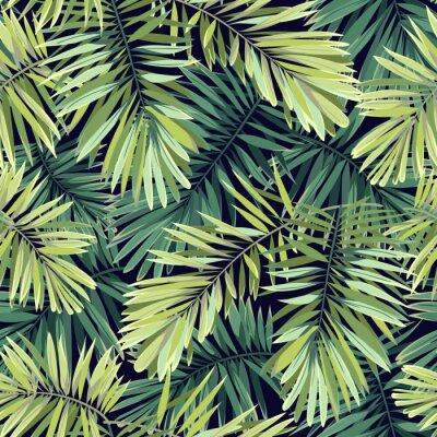 Fotomural Fundo verde-claro com plantas tropicais. Teste padrão sem emenda do vetor exótico com folhas de palmeira de phoenix.