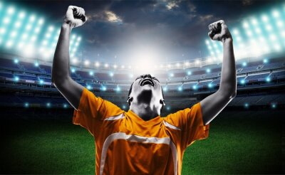 Fotomural Futebol.