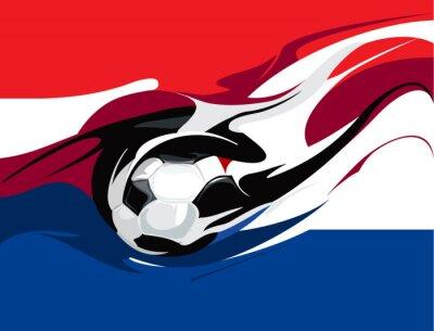 Fotomural Futebol holandês