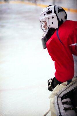 Fotomural Goalie de hóquei