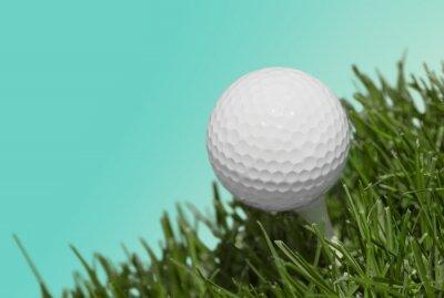 Fotomural Golfe.