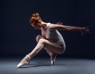 Fotomural Gracioso bailarina esguia no estúdio
