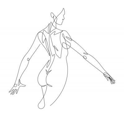 Fotomural Gráfico de vetor de linha contínua de figura feminina VI