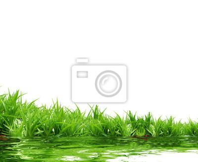 Fotomural grama