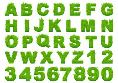 Fotomural Green grass alphabet with letters and numbers