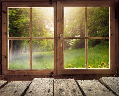 Fotomural Holzhütte mit Ausblick auf eine Waldlichtung em Frühling / Frühsommer bei Sonnenschein