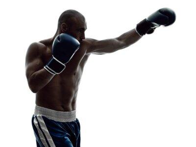 Fotomural Homem, boxers, boxe, isolado, silueta