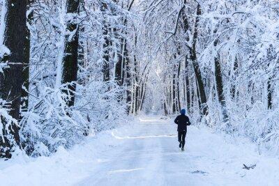 Fotomural Homem correndo na floresta no tempo de inverno