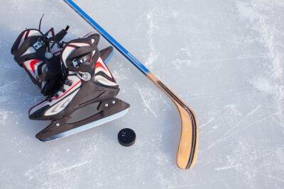 Fotomural Hóquei no gelo.