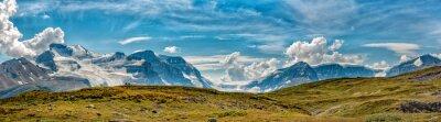 Fotomural Icefield Park Glacier vista panorâmica