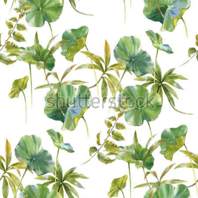 Fotomural Ilustração da aguarela da folha, teste padrão sem emenda no fundo branco