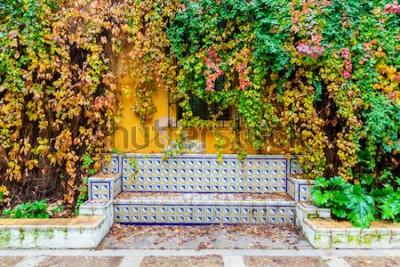 Fotomural imagem pitoresca de um banco com azulejos tradicionais em frente a uma parede revestida de videira