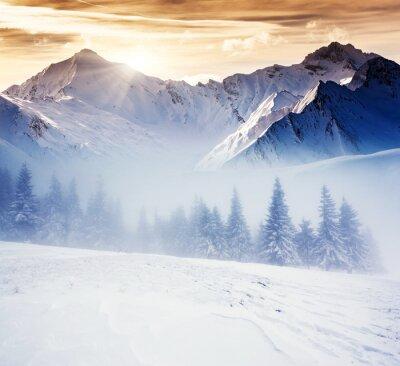 Fotomural inverno