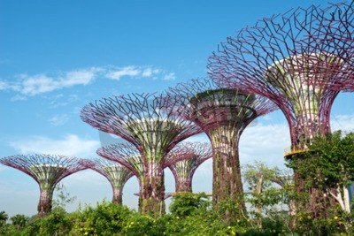 Fotomural Jardins pela baía, Singapore