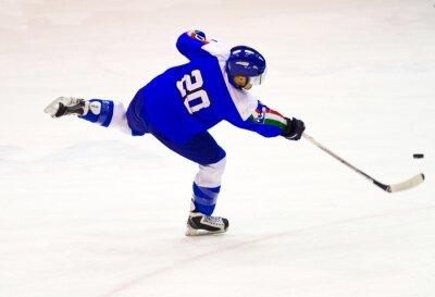 Fotomural jogador de hóquei no gelo