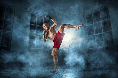 Fotomural Jovem, kickboxing