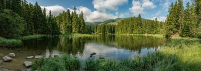 Fotomural lake in the forest in lower tatra mountains