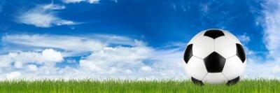 Fotomural Largo, retro, futebol, bola, capim, bandeira, frente, azul, nublado, céu