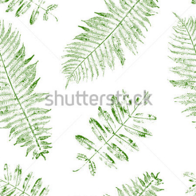 Fotomural Leaves of mountain ash and fern. Seamless pattern with leaf prints. Vector illustration.