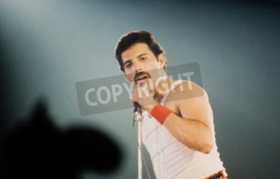 Fotomural LEIDEN, PAÍSES BAIXOS - 27 DE NOVEMBRO DE 1980: Freddy Mercury cantor da banda britânica Queen durante um concerto no Groenoordhallen em Leiden, na Holanda