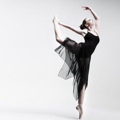 Fotomural Linda ballet-dancer posando no fundo do estúdio
