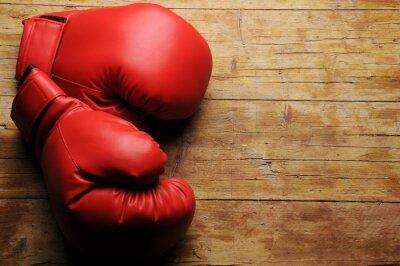 Fotomural Luvas de boxe ¿En serio?