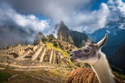 Fotomural Machu Picchu, local do património mundial do UNESCO. Um dos New Seven W
