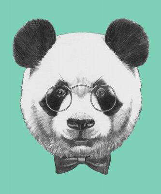 Fotomural Mão retrato de Panda desenhada com óculos e gravata borboleta. Vetor isolado elementos.