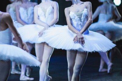 Fotomural Mãos de bailarinas. Mãos de bailarinas. Ballet declaração. Grandes bailarinas. Bailarina no movimento.