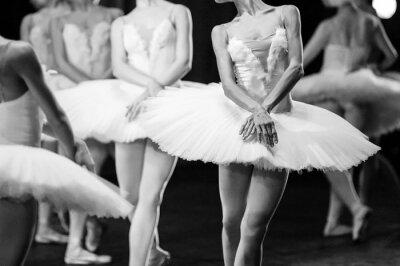 Fotomural Mãos de bailarinas. Mãos de bailarinas. Ballet declaração. Grandes bailarinas. Bailarinas no movimento.