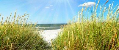 Fotomural Mar Báltico - dunas e mar