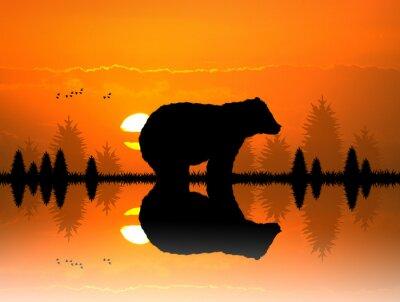 Fotomural Marrom na floresta ao pôr do sol