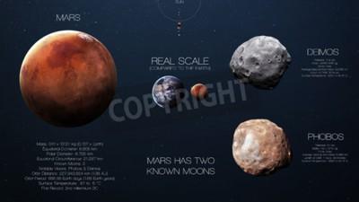 Fotomural Marte - Infografia de alta resolução sobre o planeta do sistema solar e suas luas. Todos os planetas disponíveis.