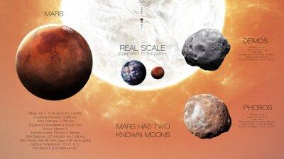 Fotomural Marte - Infografia de alta resolução sobre o planeta do sistema solar e suas luas. Todos os planetas disponíveis. Esta imagem elementos fornecidos pela NASA