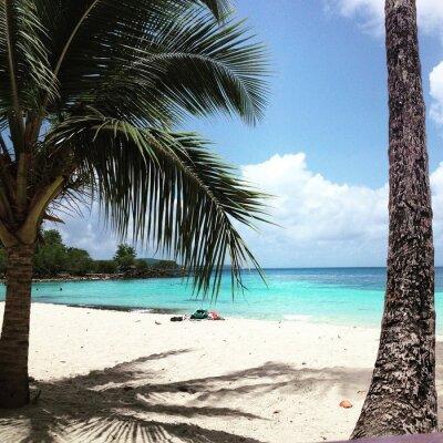 Fotomural Martinica
