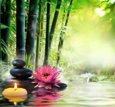 Fotomural massagem na natureza - lírio, pedras, bambu - conceito zen