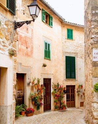 Fotomural Medieval Valldemosa tradicional vila de Maiorca