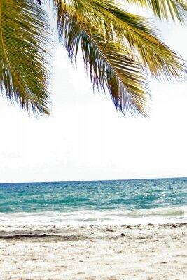 Fotomural Mer, antilhas, caraibes, tropiques ...