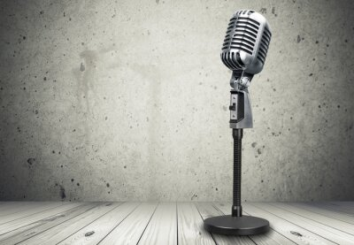 Fotomural Microfone.